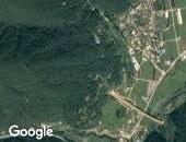 편백나무숲~천호산업